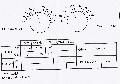 532b263c4301brecepta_po_2_wizycie.jpg - Rozbieżne wyniki badania okulistycznego
