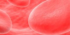 Choroby układu krwiotwórczego - forum medyczne pytania do lekarzy