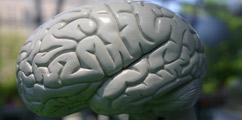 Choroby neurologiczne - forum medyczne pytania do lekarzy